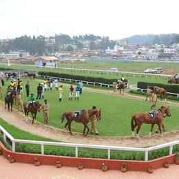 Delhi Race Club