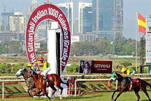Indian 2000 Guineas Betting